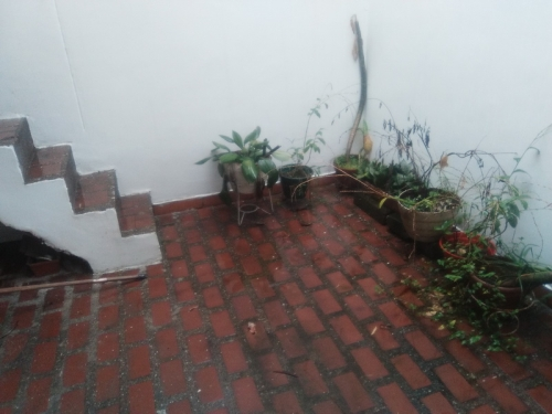 Casa en Arriendo en Medellin cod. 4046